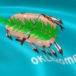 Oklahoman flag in the wind - Stock Photo