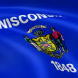 Wisconsinite flag in the wind — Stock Video