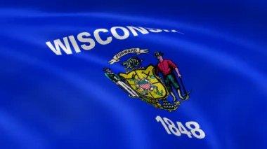 Wisconsin flagga i vinden — Stockvideo