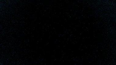 Rypadlo modrotisk — Stock video