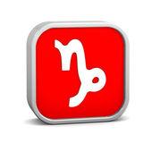 Zodiac Capricorn Sign — Stock Photo