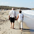 Senior couple walking together on a beach — Stock Photo