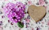 Purple flowers in a box — Stock Photo