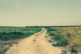 кантри-роуд в полях — Стоковое фото