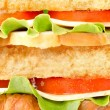 Background of delicious sandwich - Stock Photo