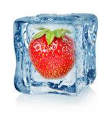 Ice cube und erdbeere — Stockfoto