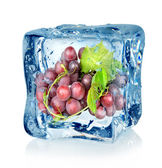 Ice cube and blue grapes — Stock Photo