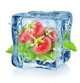 Ice cube a jahody, samostatný — Stock fotografie