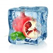 Stock Photo: Ice cube and pomegranate