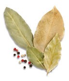 Bay leaves and spices — Stock Photo