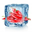 Ice cube and chili peppers — Stock Photo #16543183