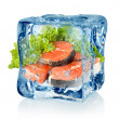 Ice cube and salmon — Stock Photo #17645369