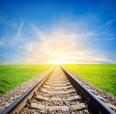 Kolejowej w dziedzinie — Zdjęcie stockowe