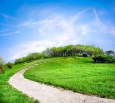 Vägen på en grön kulle — Stockfoto