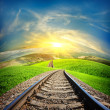 Railway in mountain fields — Stock Photo