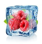 Ice cube and raspberries — Stock Photo