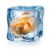 Roasted chicken in ice cube — Stock Photo