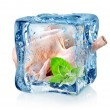 Chicken in ice cube — Stock Photo