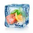 Fillet of salmon in ice cube — Stock Photo #31413857