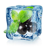 Olives in ice cube — Stock Photo