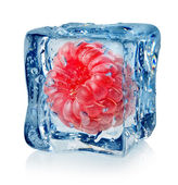 Berry raspberry in ice cube — Stock Photo