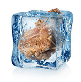 Roasted meat in ice cube — Stock Photo