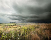 Storm clouds over field — Stock Photo
