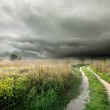 Storm clouds and road — Stock Photo #31652151