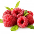 Stock Photo: Raspberry isolated