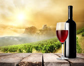 Vineyard and wine — Stock Photo