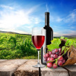 Red wine and vineyard — Stock Photo