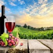 Wine with grape and vineyard — Stock Photo