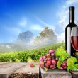 Bottle wine and vineyard — Stock Photo