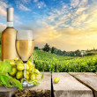 White wine and vineyard — Stock Photo