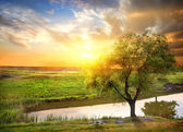 Sunset over spring river — Stock Photo