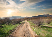Road in evening — Stock Photo