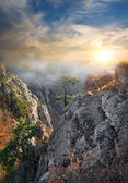 Fog in the mountains — Stock Photo