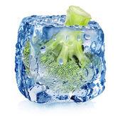 Broccoli in ice cube — Stock Photo