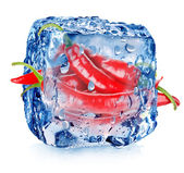 Hot pepper in ice cube — Foto Stock