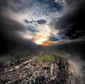 Fog over country road — Stock Photo