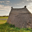 Stock Photo: Neolithic prairie settlement