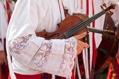подробная информация о скрипка — Стоковое фото