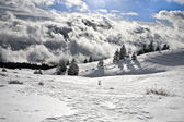 Wilderness in the clouds — Stockfoto