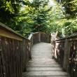 Stock Photo: Natural wooden stairs