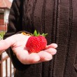 Tasty strawberry - Stockfoto