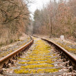 Obsolete railroad tracks — Stock Photo