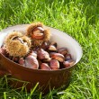 Fresh chestnuts in a pot — Stock Photo