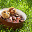 Fresh chestnuts in a pot — Photo