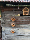 Houses for insects — Stock Photo