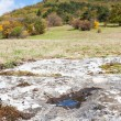 Stock Photo: Limestone landscape